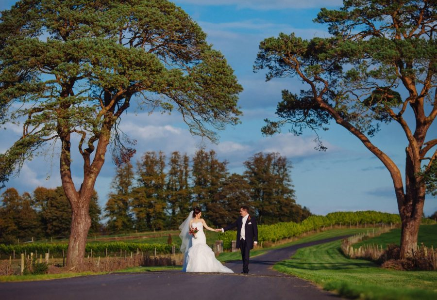 Middleton Park House Hotel, evening light, wedding couple walking hand in hand, large trees, green