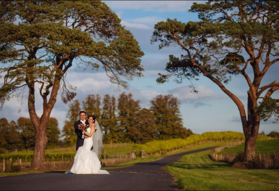 Irish wedding couple laughing under large iconic trees Middleton Park House