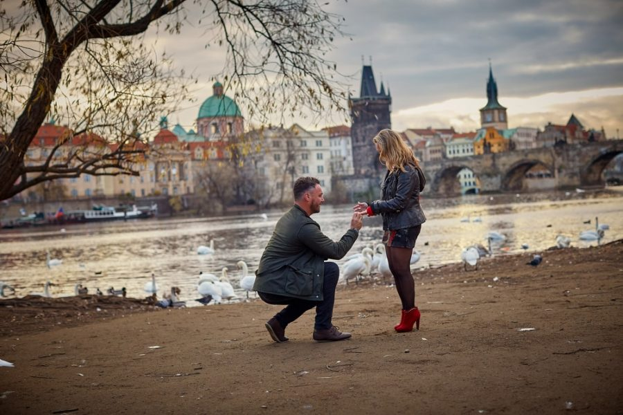 the moment when he drops to his knee and proposes as the swans watch in the background